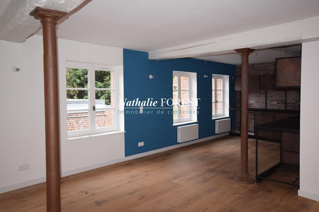 Au Coeur du vieux Lille , dans demeure du XIII eme , appartement  type loft , 4 chambres
