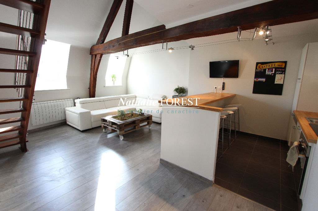 VIEUX LILLE, Beau duplex 3 pièces 75 m2 en loi carrez (86m2) au dernier étage d'un immeuble entièrement rénové en 2007