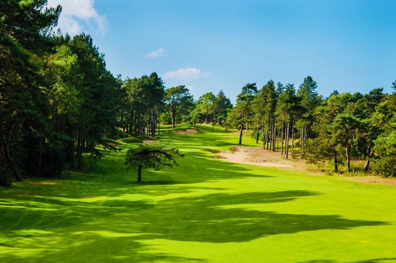 HARDELOT 1er rang Golf beau terrain constructible de 1703M2,  viabilisé , superbe environnement boisé